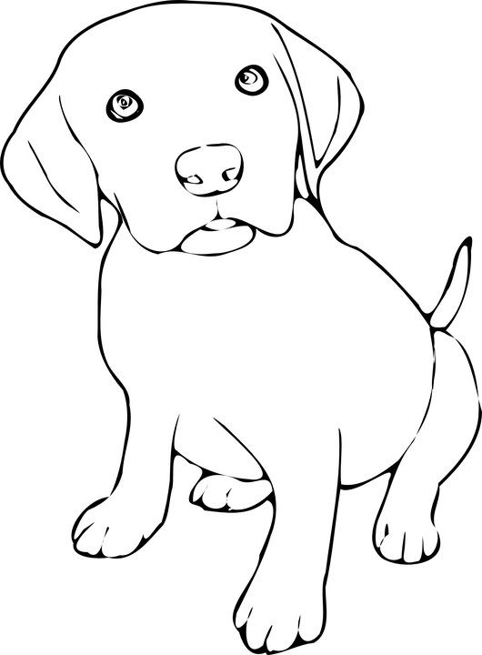 Weimaraner Coloring Pages