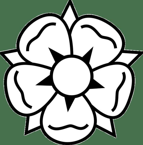 flower macro floral free vector