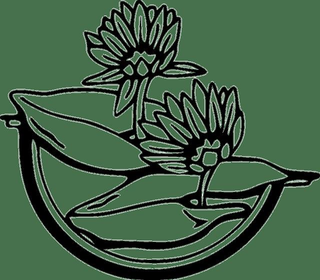Gratis vectorafbeelding: Bloemen, Zwart Wit, Water, Lily