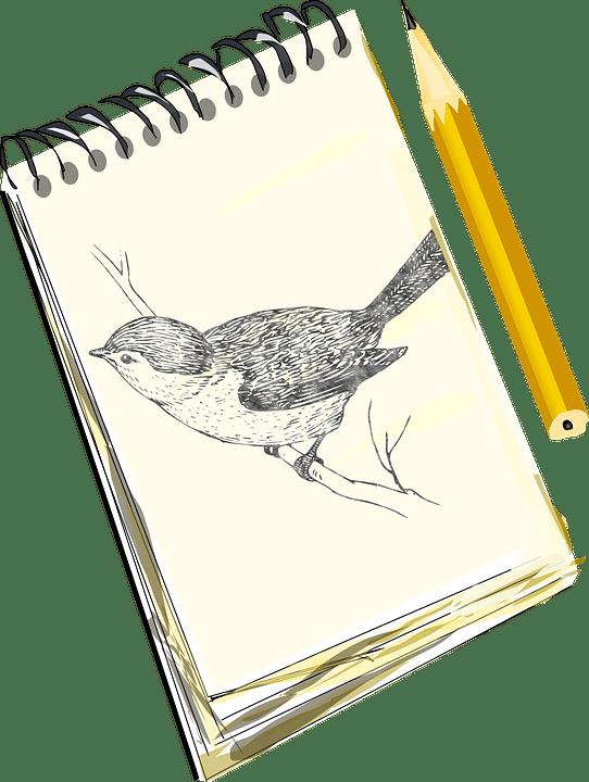 Art Sketch Pad Online Arte Inspire