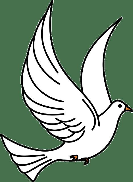 Vector gratis Paloma Aves Que Vuelan Vuelo  Imagen