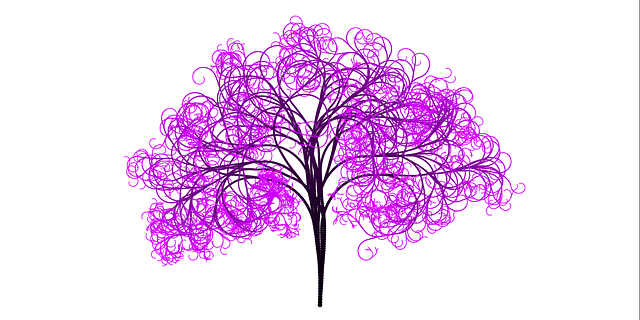 Tree Branches Aesthetic  Free image on Pixabay
