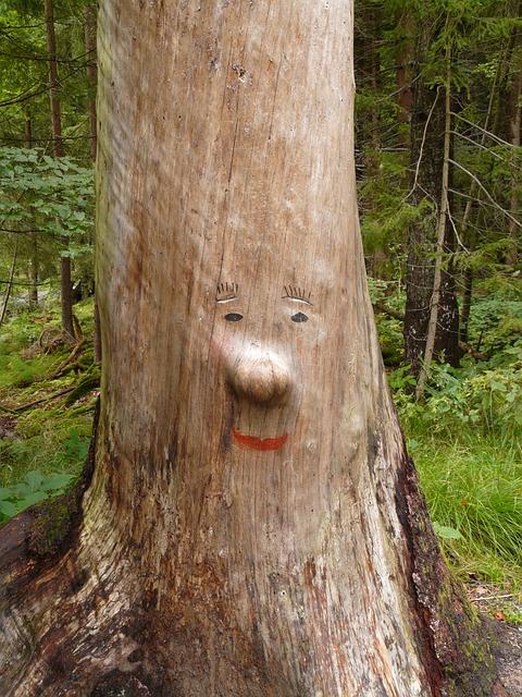 Baumstamm Gesicht Schnitzerei  Kostenloses Foto auf Pixabay