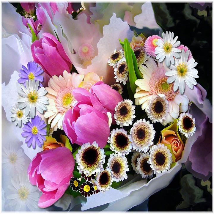 Frhling Blumenstrau Tulpen  Kostenloses Foto auf Pixabay