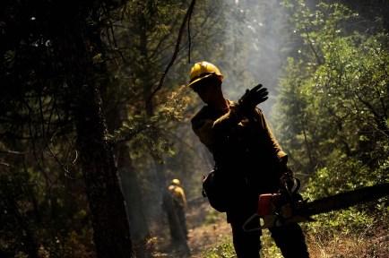 消防士, 森林火災, ホット, 煙, 煙のような, チェーンソー, シルエット, 勇敢な, 男, 男性, 森林