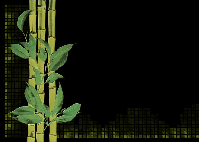 Black Green Wallpaper Bamboo Plant Digital Creation 183 Free Image On Pixabay