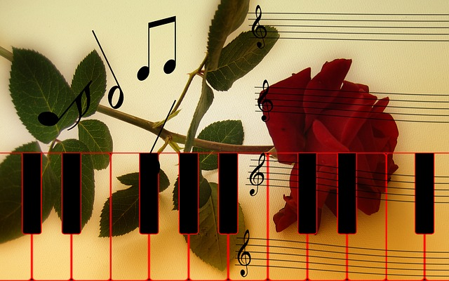 Girl Vector Wallpaper Rose Piano Keys 183 Free Image On Pixabay