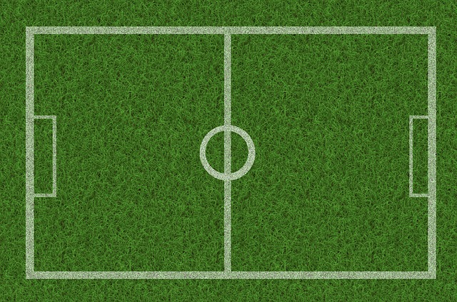 Kostenlose Illustration Gras Rasen Fussball Spielfeld  Kostenloses Bild auf Pixabay  114651