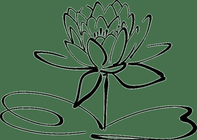 Lotus Bloem Zeer Fijne Tekeningen · Gratis