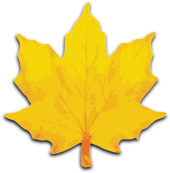 Maple, Foliage, Fall, Leaf, Yellow