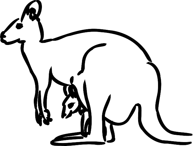 Kangaroo Baby Animal  Free vector graphic on Pixabay
