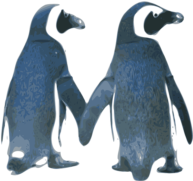 Free vector graphic Penguins Love Birds Couple  Free