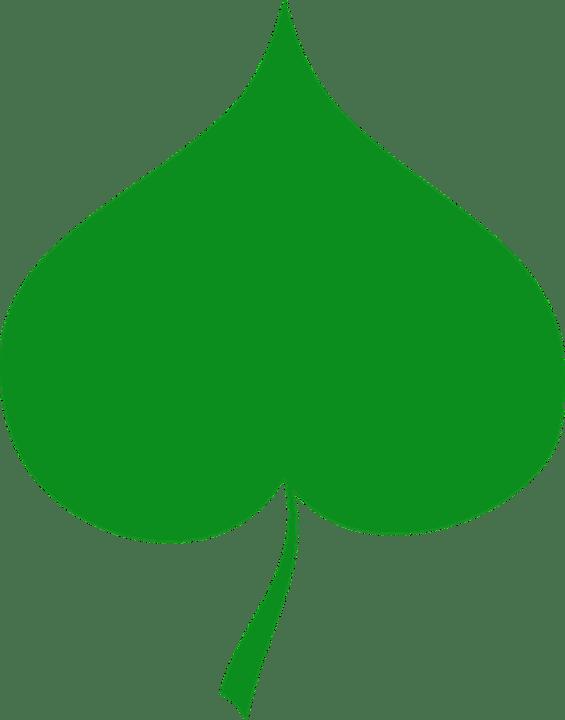 free vector graphic linden green