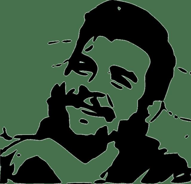Korean Cartoon Girl Wallpaper Free Vector Graphic Che Guevara Guerilla Revolution