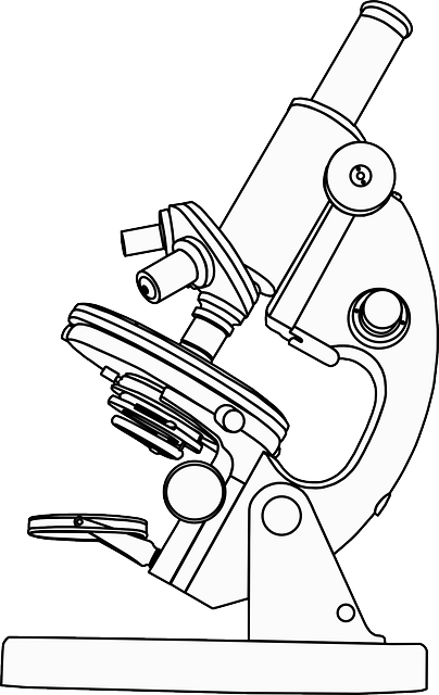 Microscope 13 Free Printable First Aid And Medical Sketch