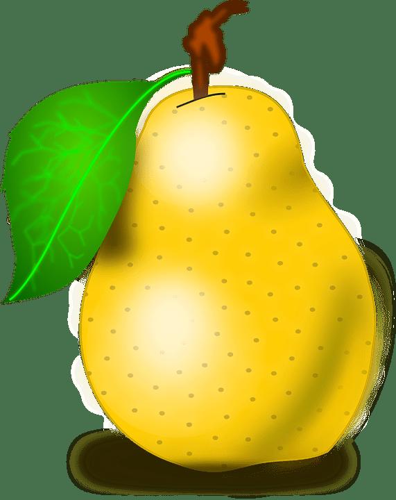 Buah Pear Segar  Gambar vektor gratis di Pixabay