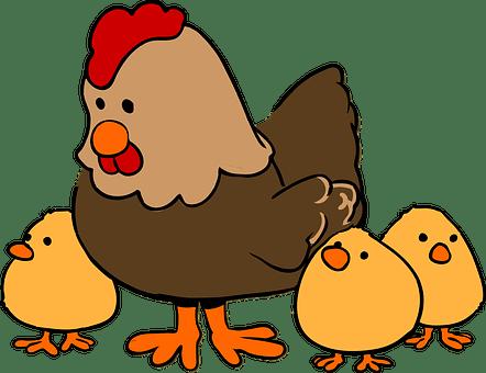 鶏肉, 編, かわいい, 家族, 動物, 落書き, 描画, フラット描画