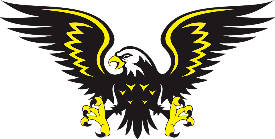 Eagle Bird Animal  Free vector graphic on Pixabay