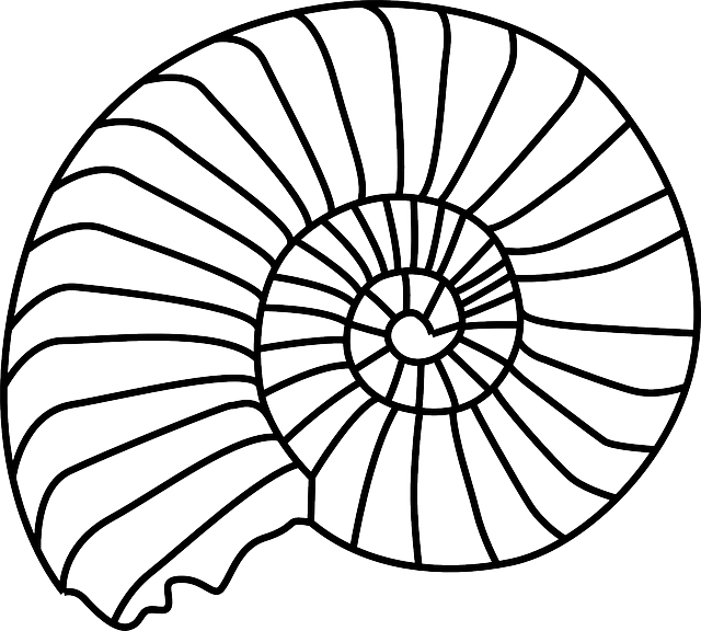 Fossil Animal Biology · Free vector graphic on Pixabay