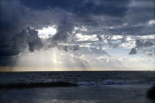 Crazy Girl Wallpaper Free Photo Ocean Horizon Clouds Sea Free Image On