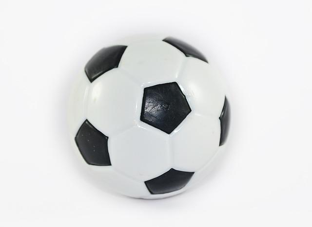 Black Dog Wallpaper Free Photo Toy Football Rubber Ball Toys Free Image