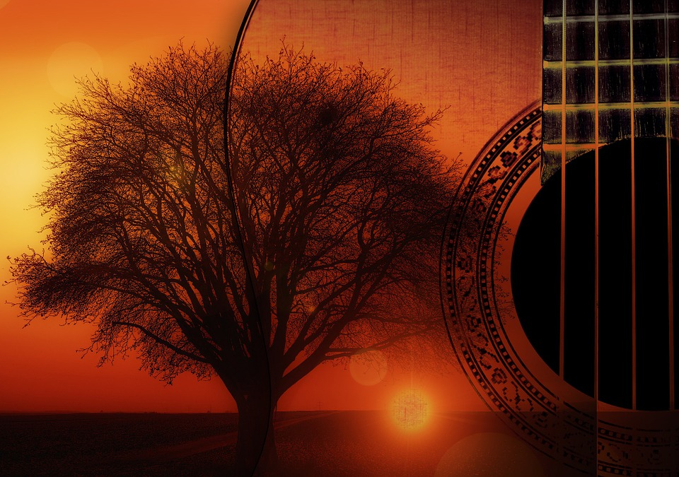 Wallpaper Country Girl Guitar Strings Instrument 183 Free Image On Pixabay