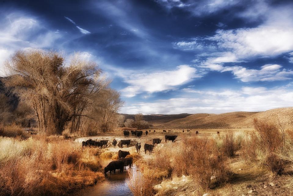 Free photo California Landscape Scenic Sky  Free