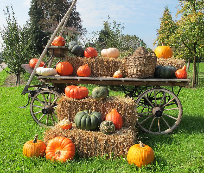 Pumpkins Decoration Wooden Wagon  Free photo on Pixabay