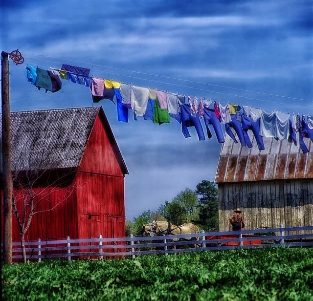 Free photo Amish Farm Rural Horse Field  Free Image on Pixabay  221303