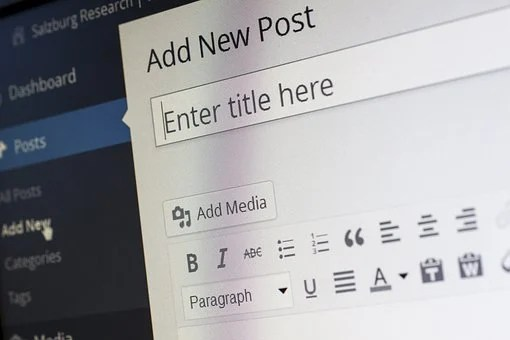 WordPress post editor showing the dsaaboard where it says Add New Post and Enter title here