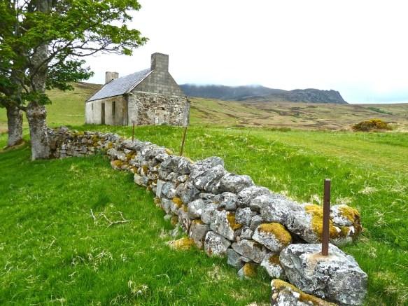 Farmhouse, Derelict, Ireland, Nature, Field, Farm