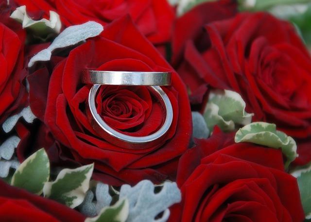 Kostenloses Foto Trauringe Ringe Hochzeit Rosen