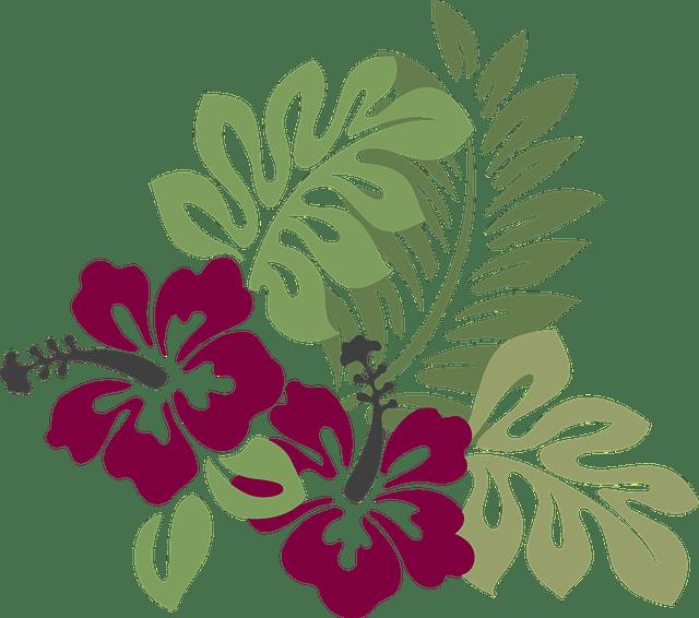 Free vector graphic Hibiscus Burgundy Foliage  Free