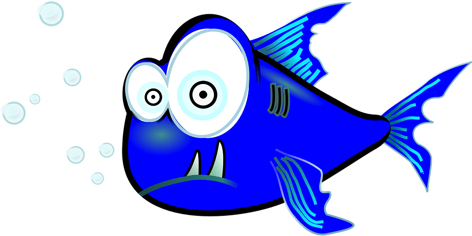 Download Download png images of fish, fish transparent pictures free download transparent png logos. Piranha Fish Funny · Free vector graphic on Pixabay 1svg.com