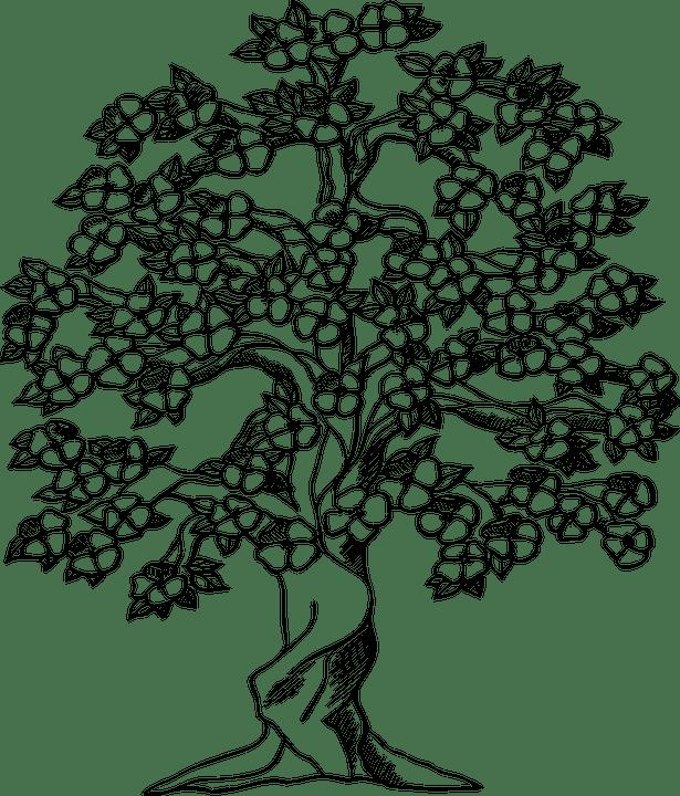 Tree Big Old · Free vector graphic on Pixabay