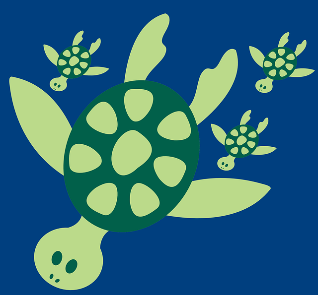 Cute Baby And Baba Wallpaper Turtle Swimming Cute 183 Free Vector Graphic On Pixabay