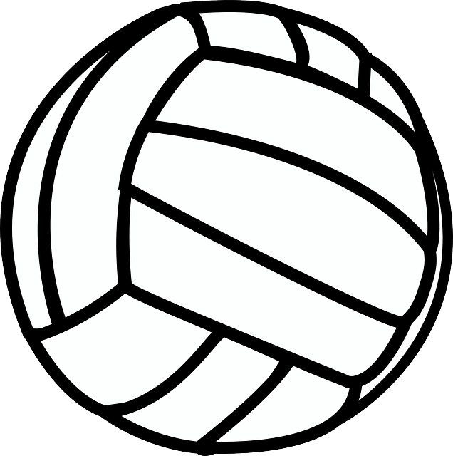 Volleyball Sport Black · Free vector graphic on Pixabay