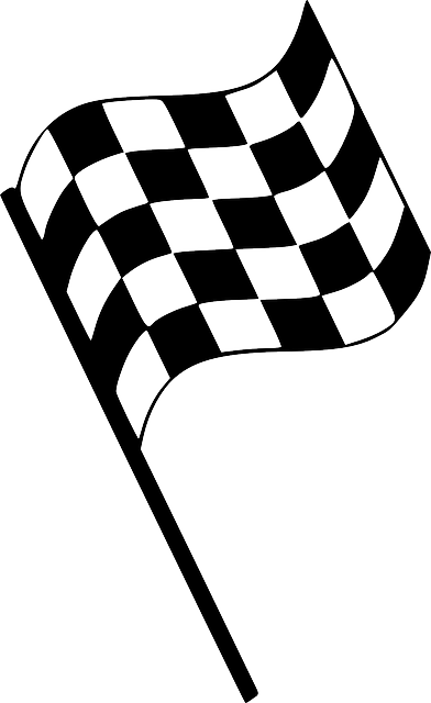 Checkered Flag Start Stop · Free vector graphic on Pixabay