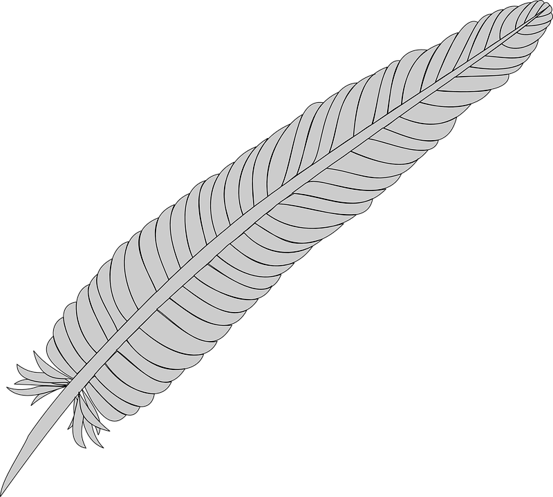 Falling Feathers Wallpaper Feather Silver Quill 183 Free Vector Graphic On Pixabay