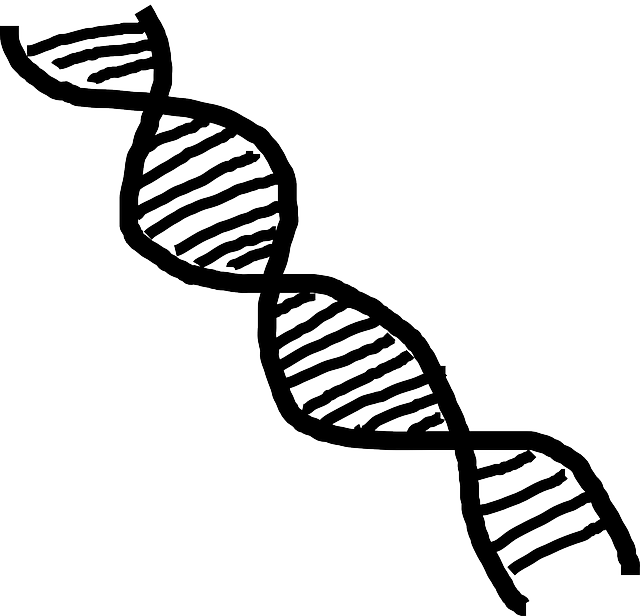 Free vector graphic: Dna, Double Helix, Helix, Science