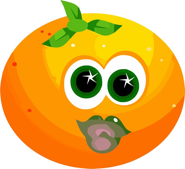 Fruit Face Orange  Free vector graphic on Pixabay