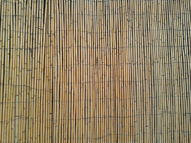 Free Photo Bamboo Fence Natural Stick Wall Free