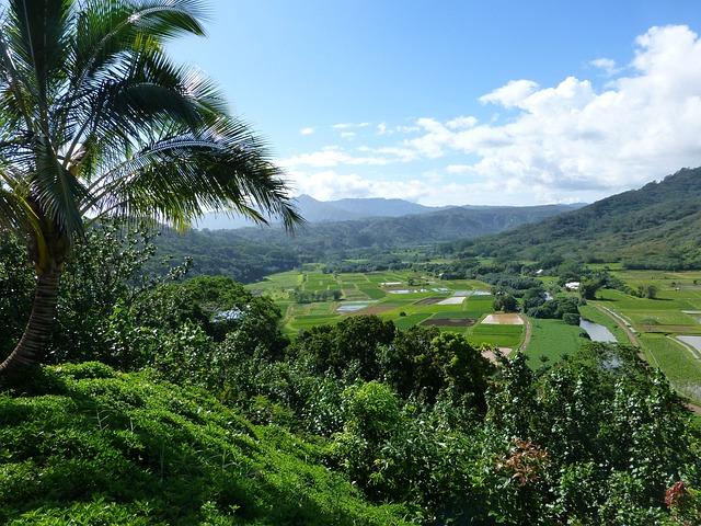 Scenery Wallpaper Hd Free Download Free Photo Kauai Hanalei Hawaii Farm Land Free