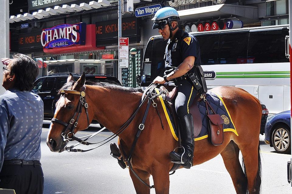 Free photo Police Police Man Uniform Stop  Free Image