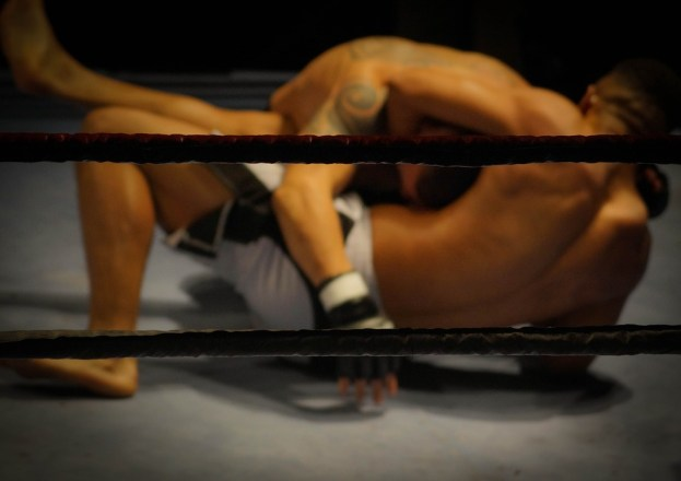 Wrestling, Fighting, Martial Arts, Fighters