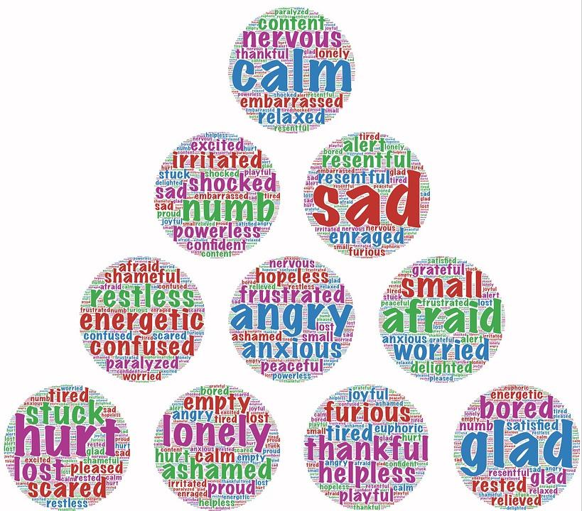 Free Illustration Emotions Mixed Emotions Feelings