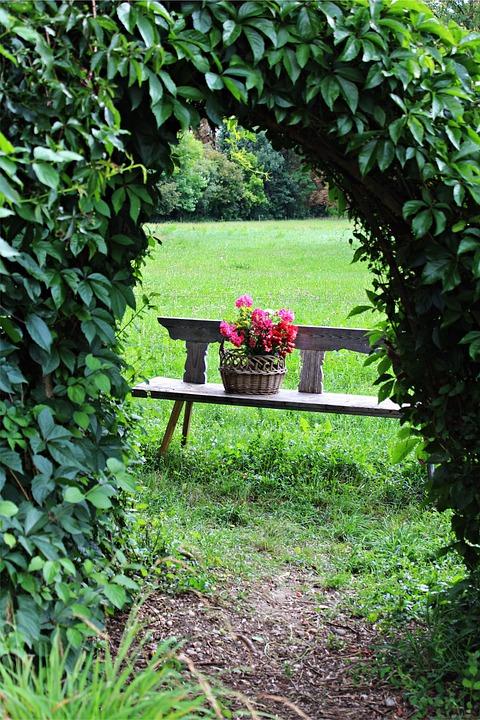 Garten Durchgang Blumen  Kostenloses Foto auf Pixabay