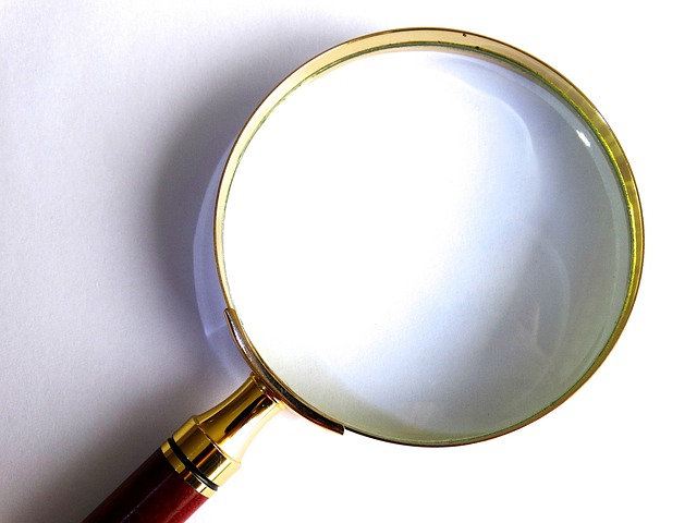 Free Photo: Magnifying Glass, Magnification