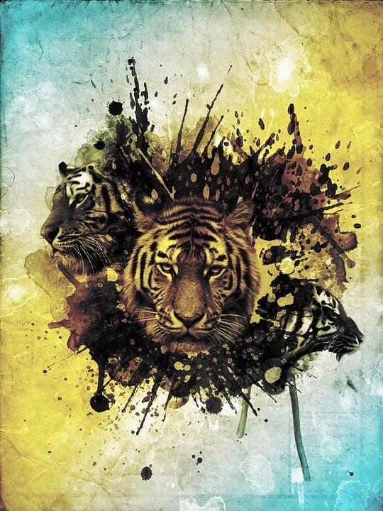 Mewarnai Binatang Harimau Contoh Gambar Mewarnai 7 Modern Home