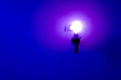 Lampu Neon Gambar  Pixabay  Unduh gambargambar gratis